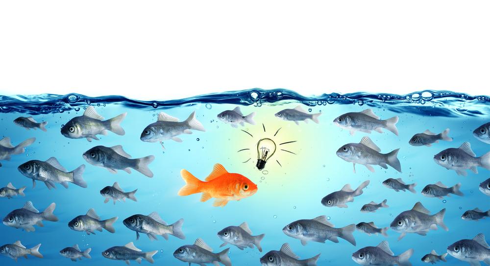 Weiterbildung im Vertrieb heißt auch mal gegen den Strom zu schwimmen.