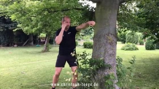 Fitness-Boxen, Online-Training, Klimmzug, Klimmzüge trainieren, Boxen, Christoph Teege, Boxen statt Mimimi