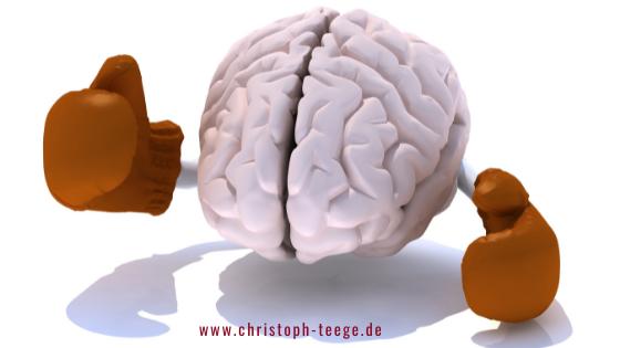 Boxen macht schlau, Neurogenese, Neuroplastizität